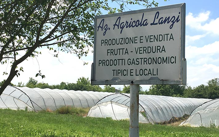 Lanzi Marco Agricultural Company: sign at the entrance of the farm with written production and sale of fruit and vegetables and typical local products