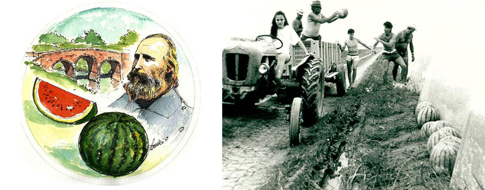 Foto storiche: Garibaldi e l'Anguria Reggiana IGP - Famiglia di coltivatori che raccoglie cocomeri anni '70